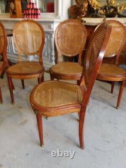 Serie De 6 Chaises Style Louis XVI Cannees